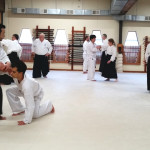 Adult Aikido Classes
