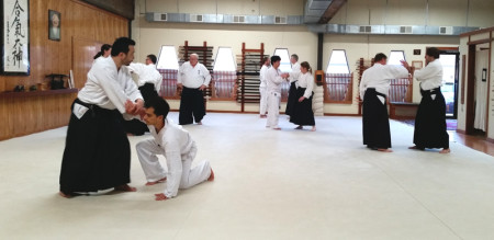 Adult Aikido Classes at Aikido Eastside in Bellevue, WA