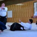 Aikido Randori Intensives