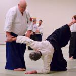George Ledyard Aikido Seminar