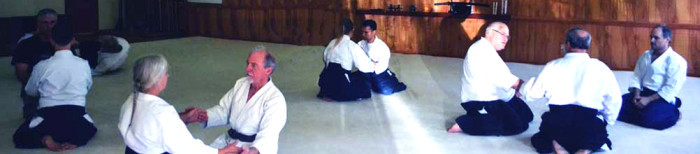 Aikido Classes for adults and children