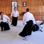 Aikido Randori Training