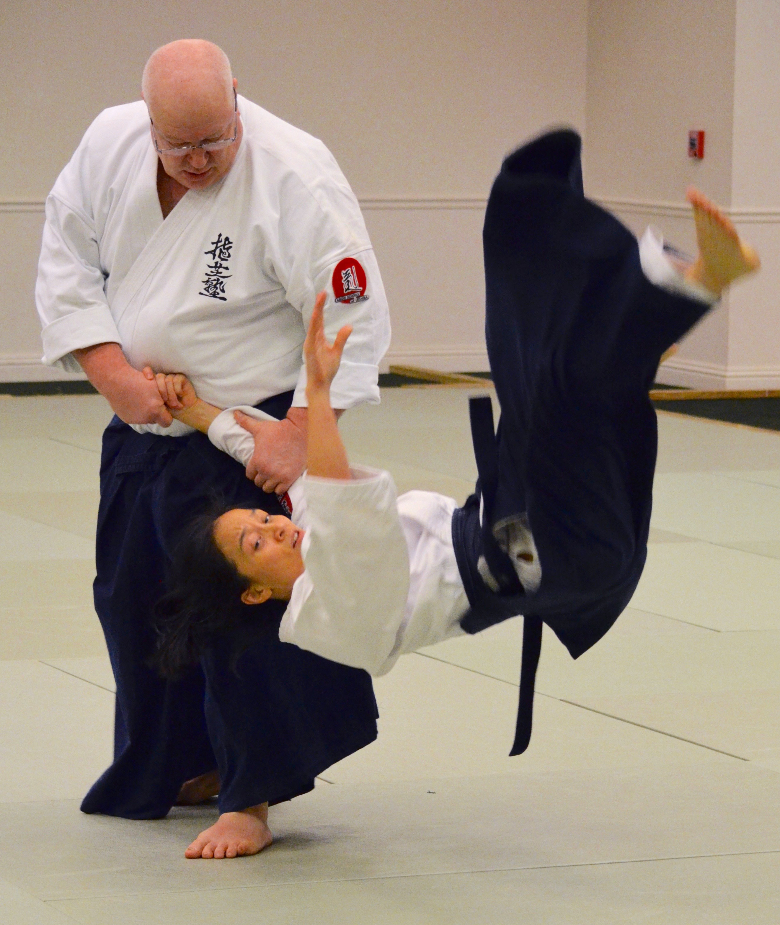 Aikido Seminar with George Ledyard